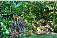 A Peaceful Passive Garden